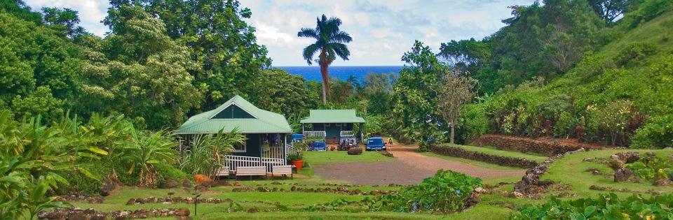 live-hawaii-5-gorgeous-volunteer-vacations-heronew-1